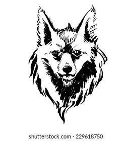 illustration Marker hand-drawn forest animals: fox