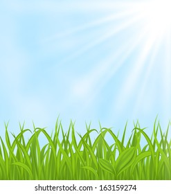 Illustration nature background with green grass and sky - raster