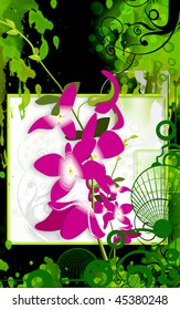 Illustration of orchid with stem and leaves