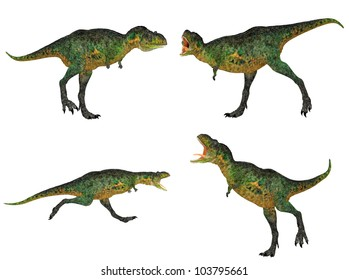 Illustration of a pack of four (4) Aucasaurus with different poses isolated on a white background