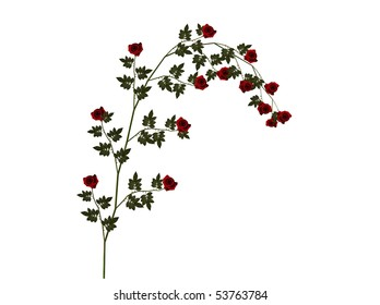 Illustration of a red rose