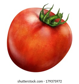 Illustration of red tomato isolated on white background