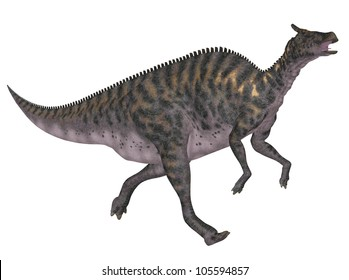 Illustration of a Saurolophus (dinosaur species) isolated on a white background