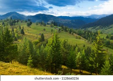 Illustration of scenic Karpaty mountains on Bucovina in Romania.