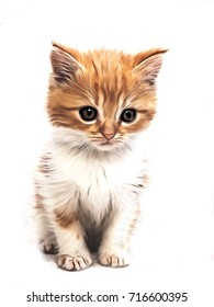 Illustration of small sitting cat with white background