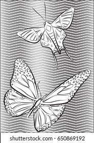 Illustration of two butterflies. Great to use as a coloring page.