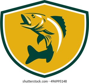 Illustration of a Walleye (Sander vitreus, formerly Stizostedion vitreum), a freshwater perciform fish jumping up  viewed from the side set in shield crest on isolated background done retro style.