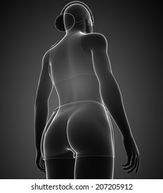 Illustration of xray female body artwork
