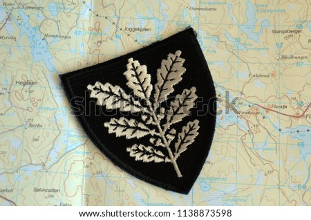 Topographic Map Of Norway.Illustrative Editorial Insignia Army Norway Topographic Stock Photo