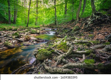ilse brook in the forest of the Harz in Germany