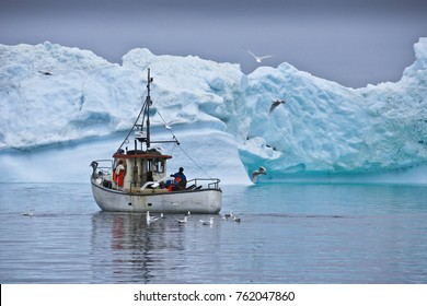 ILULISSAT, GREENLAND, JULY 26, 2013. Gulls await a meal as fishermen try their luck near a blue iceberg in West Greenland's Disko Bay.