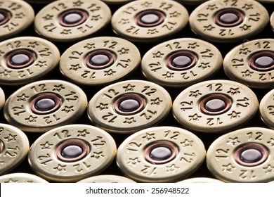 an image of 12 gauge shotgun shells used for hunting