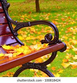 秋のクローズアップの公園のベンチ