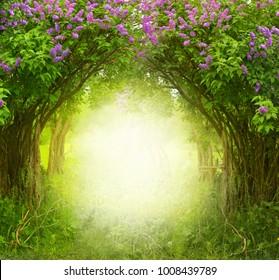Fantasy-Hintergrund. Zauberwald. Schöne Frühlingslandschaft. Fliederbäume in voller Blüte
