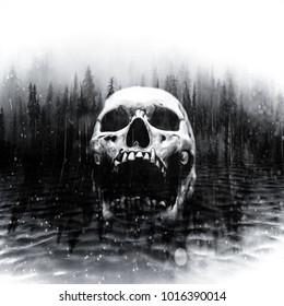 Schädel in der Mitte eines dunklen nebligen Sees