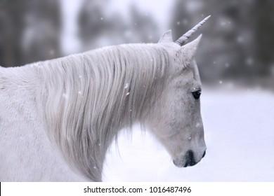 Magic fantasy white beautiful unicorn in winter snow fall