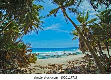Dollys Beach, Christmas Island - Indian Ocean