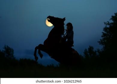 Luz de luna de terror de fantasía con silueta del caballo oscuro encabritado. Semental salvaje con jinete bajo luna llena en la noche. Fondo de atmósfera de horror mágico y halloween.