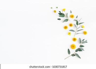 Composición de flores. Patrón de flores amarillas y hojas de eucalipto sobre fondo blanco. Endecha plana, vista superior, espacio de copia