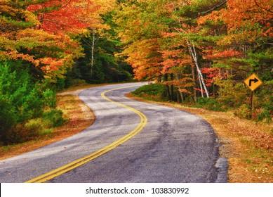 ニューイングランドの秋の木々を曲がりくねった道が曲がっています