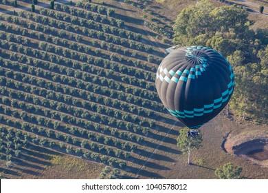 Mañana en globo aerostático sobre campos agrícolas de Hunter Valley, Australia