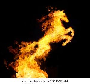 焚き火は馬に変わります。