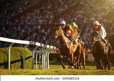 Zwei Jockeys bei Pferderennen auf seinen Pferden auf dem Weg zur Ziellinie. Traditioneller europäischer Sport.