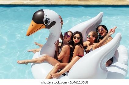 Gruppe von Freunden im Urlaub, die zusammen auf einem aufblasbaren Schwan im Schwimmbad sitzen. Multiethnische Freundinnen genießen auf einem aufblasbaren weißen Schwan im Pool.