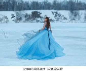 シンデレラの豪華で緑豊かな青いドレスと壮大な列車。雪に覆われた凍った湖の上を女の子が歩く。彼女のハエの近くで野鳥の女性は会議のために彼女に優しく微笑む。アート写真。