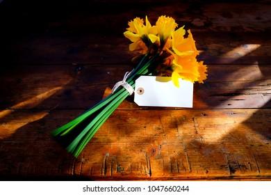 Ein Bündel von 14 gelben Narzissen, die mit einer weißen Schnur in einer Schleife um die grünen Stängel zusammengebunden sind. An den Blumen sind leere weiße rechteckige Etiketten befestigt, auf denen etwas geschrieben werden kann.