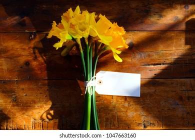 Ein Bündel von 14 gelben Narzissen, die mit einer weißen Schnur in einer Schleife um die grünen Stängel zusammengebunden sind. Auf den Blumen befindet sich ein leeres weißes rechteckiges Etikett, auf das etwas geschrieben werden kann.