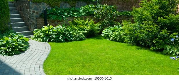 石の間で草が育つ庭の石の小道。植物園の詳細。