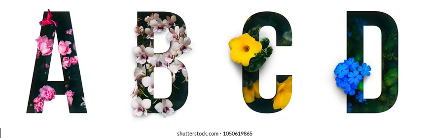 Flower font Alphabet a, b, c, d made of Real alive flowers with Precious paper cut shape of letter. Collection of brilliant flora font for your unique decoration in spring, summer & many concept idea