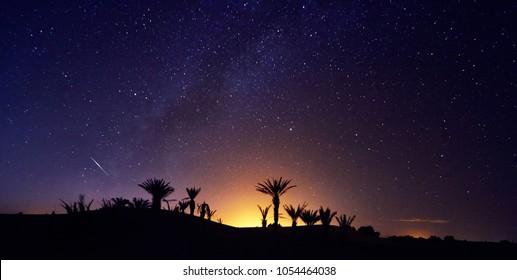モロッコのサハラ砂漠のオアシスの上の星空。モロッコへの旅。オアシスのヤシの木に輝きます。夜空の何十億もの星、天の川。パノラマ写真