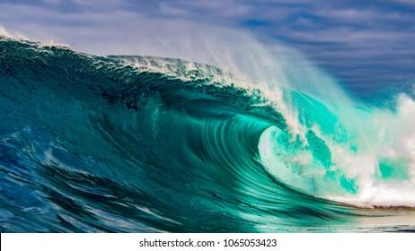 Amazing, perfect wave