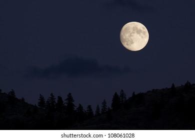 Luna llena ascendiendo sobre bosque de coníferas; Silueta del horizonte