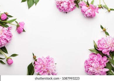 Flowers composition. Frame made of pink peony flowers on white background. Flat lay, top view.