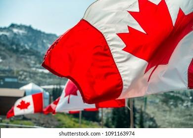 Banderas de Canadá ondeando al viento en escenario de montaña.