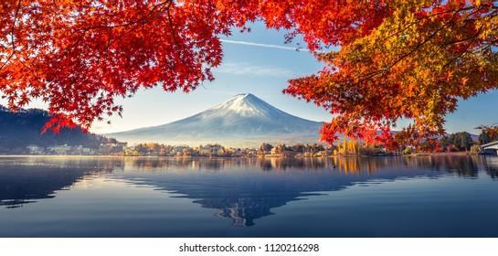 Bunte Herbstsaison und Berg Fuji mit Morgennebel und roten Blättern am Kawaguchiko-See ist einer der besten Orte in Japan