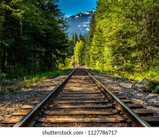 線路の長いセクションは、雪に覆われた山を背景にブリティッシュコロンビアの森を通り抜けています。