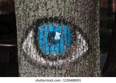 森の目は人を見つめています。木に描かれているのは青い目です。環境運命の保護