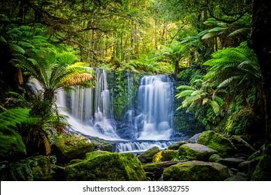 オーストラリアのタスマニア州のマウントフィールド国立公園のホースシュー滝