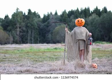scarecrow pumpkin head in a field