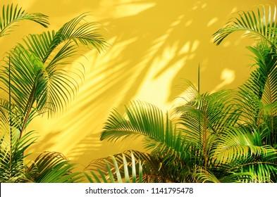 緑の熱帯のヤシの葉、日光の影のパターン、夏の背景に囲まれた明るい黄色の塗られた壁。