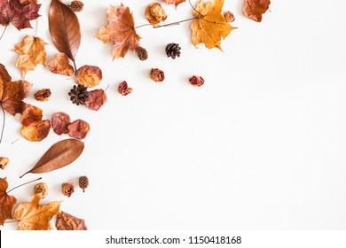 秋の組成物。白い背景の上の秋の乾燥した葉で作られたフレーム。フラット横たわっていた、トップビュー、コピースペース