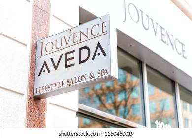 Aveda Logo Vector Eps Free Download