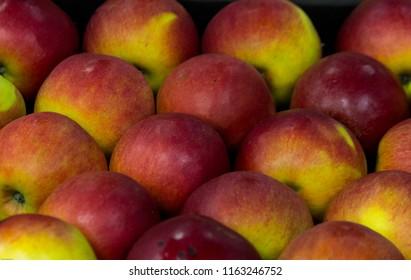 マーケットブースにチェックメイト順に並べられた黄赤色のリンゴ