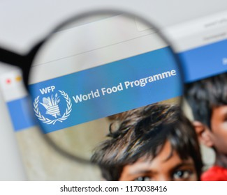 Wfp World Food Programme Logo Vector Ai Free Download