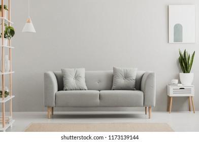 Cartel sobre gabinete blanco con planta junto al sofá gris en el interior de la sala de estar simple. Foto real