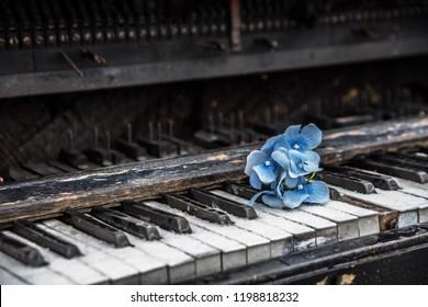 ピアノ鍵盤の青い花